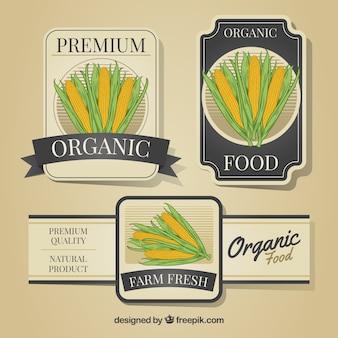 Etiquetas decorativas con mazorcas de maíz