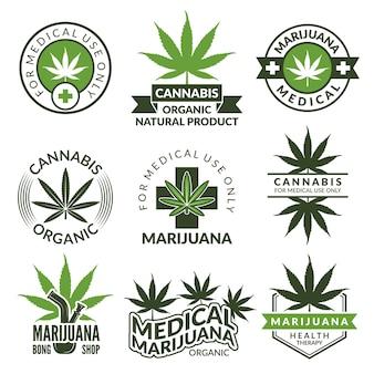 Etiquetas con diferentes imágenes de plantas de marihuana. hierbas medicinales, hoja de cannabis. ilustración medicinal de la insignia de narcóticos de marihuana