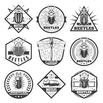 Etiquetas premium de escarabajos monocromos vintage con inscripciones libélula y diferentes tipos de errores aislados