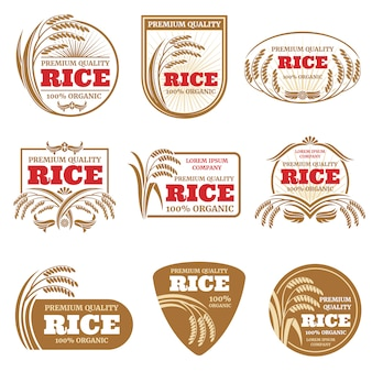 Etiquetas de vector de arroz con cáscara.