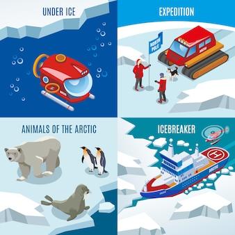 Expedición descubrimientos de animales del norte bajo agua congelada conjunto de composición de rompehielos
