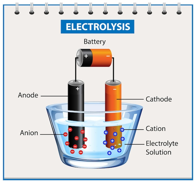 Experimento de diagrama de electrólisis para educación.