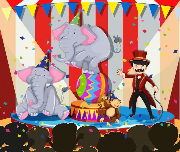 Exposición de animales en el circo.