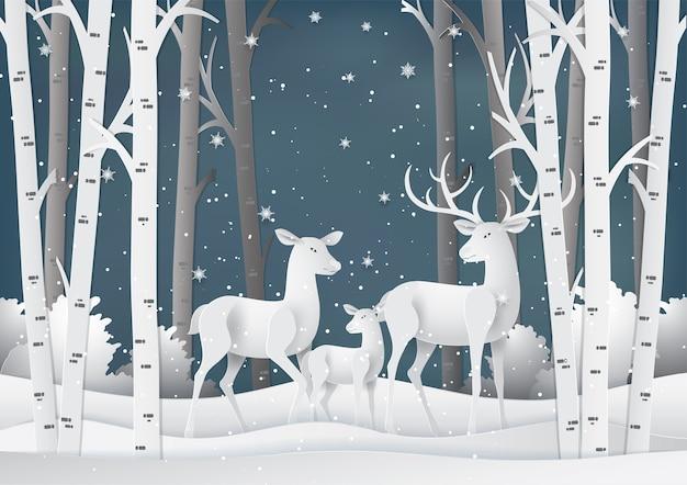 Familia de ciervos en el bosque con nieve.