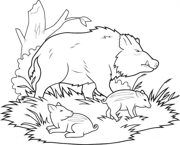 Familia de jabalí