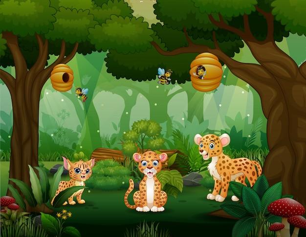 Familia leopardo de dibujos animados jugando en medio del bosque
