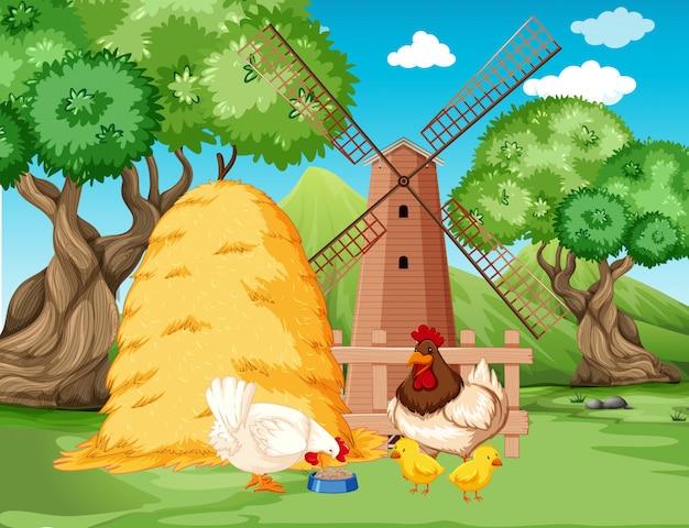 Familia de pollos en la granja