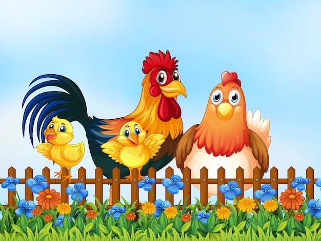 Familia de pollos en el jardín.