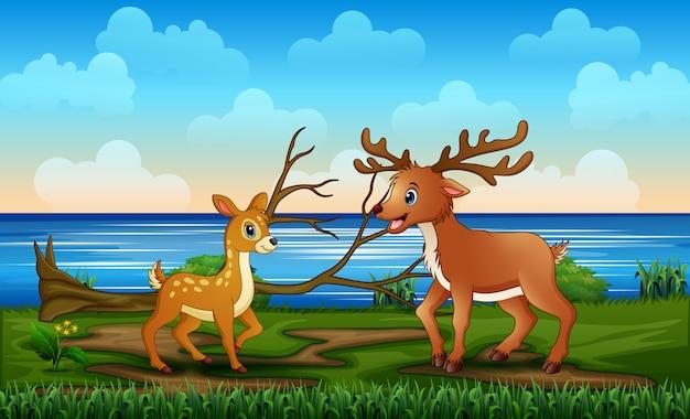 Familia de renos salvajes en la ilustración de la orilla del río