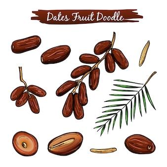 Fechas colección de ilustración de vector de fruta.