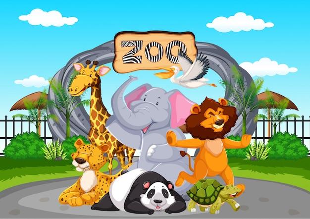Felices animales en el zoológico