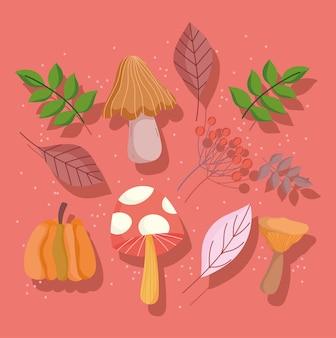 Feliz día de acción de gracias hojas de otoño setas calabaza hojas iconos de follaje
