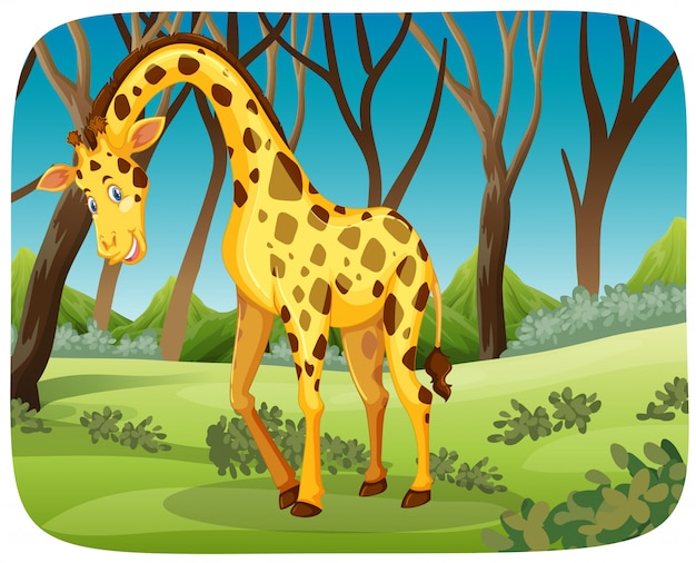 Feliz jirafa en escena de la naturaleza