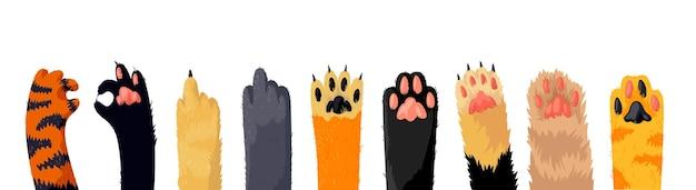 Fila de patas de gato, colección de varias patas de gatito lindo, pie de animal doméstico aislado sobre fondo blanco. diferentes patas divertidas para mascotas con garras, elementos de diseño gráfico. ilustración de vector de dibujos animados, conjunto