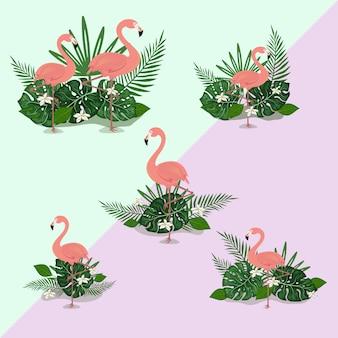 Flamenco ilustración tropical verano