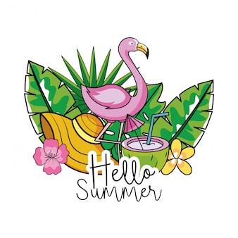 Flamenco con sombrero y coco en vacaciones de verano.