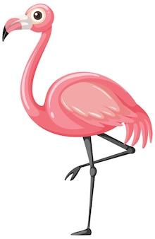 Flamingo en estilo de dibujos animados aislado en blanco