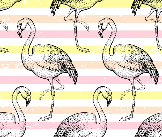 Flamingo de patrones sin fisuras, bosquejo doodle textura.