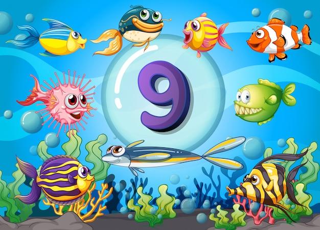 Flashcard número nueve con nueve peces bajo el agua