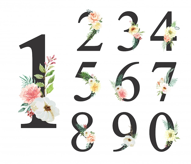 Flor acuarela número 0-9 colección.