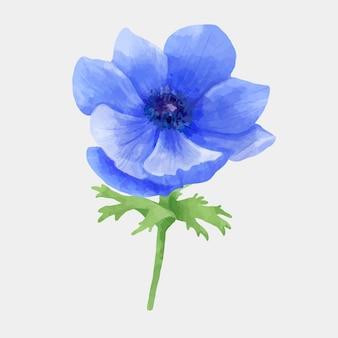 Flor azul, mano, dibujado, vector, floral clipart
