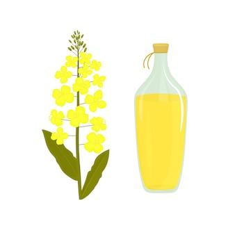 Flor de canola. botella de aceite de colza. planta de colza.