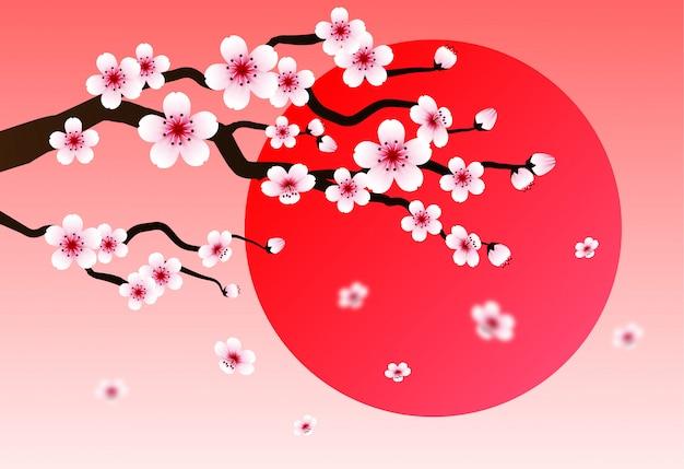 Flor de cerezo. fondo rosa sakura y puesta de sol