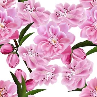 Flor de cerezo de patrones sin fisuras sobre fondo blanco.