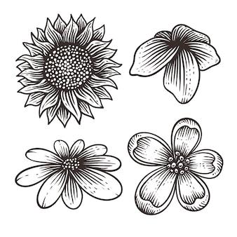 Flor conjunto dibujado a mano ilustración