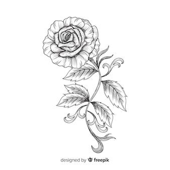 Flor dibujada a mano con estilo elegante