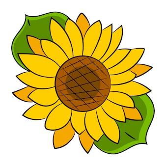 Flor de girasol aislado, ilustración vectorial