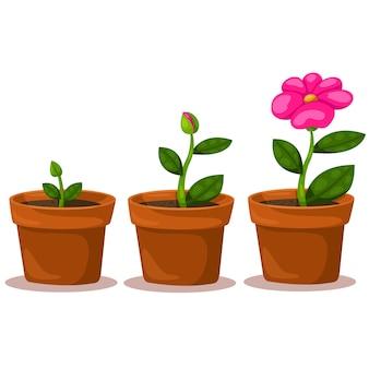 Flor ilustradora del crecimiento.