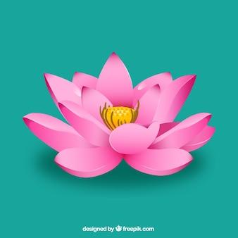 Flor de loto rosada