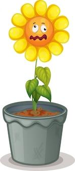 Flor en la maceta