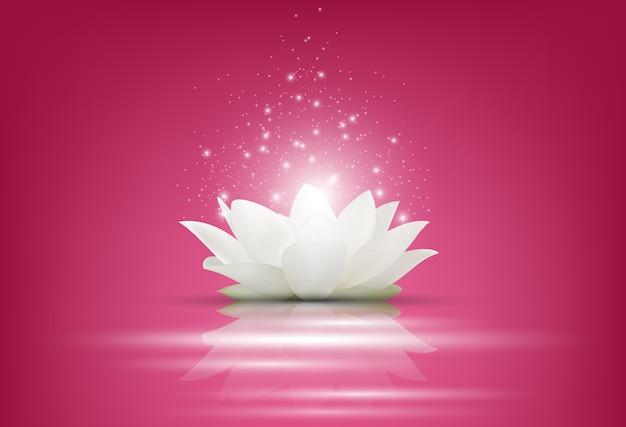 Flor mágica de loto blanco sobre fondo rosa