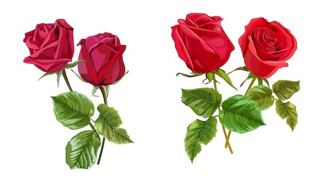 Flor rosa roja para tarjetas de felicitación e invitaciones de la boda.
