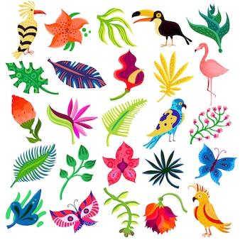 Flora y fauna troípica