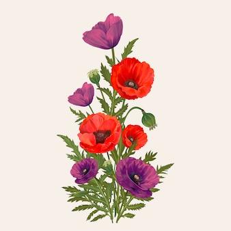 Flores de amapola mezcladas