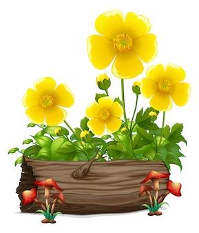 Flores amarillas y troncos de madera