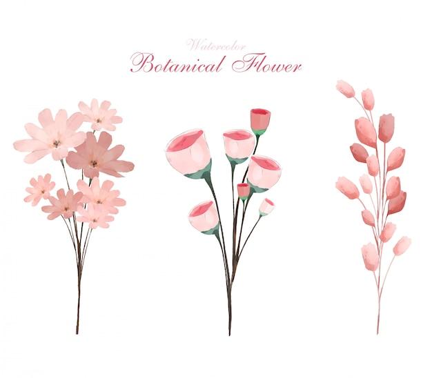 Flores botánicas de acuarela