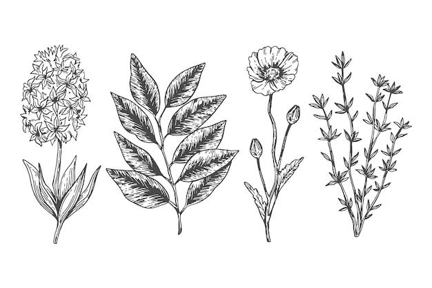 Flores botánicas en estilo vintage
