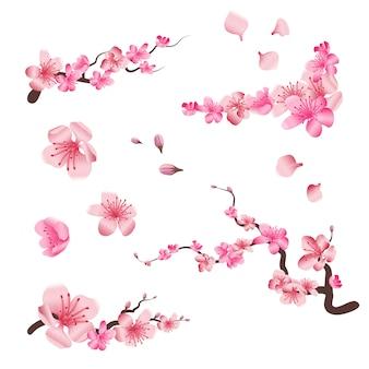 Flores de cerezo en flor de sakura de primavera