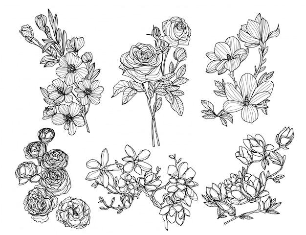 Flores dibujo a mano y boceto en blanco y negro