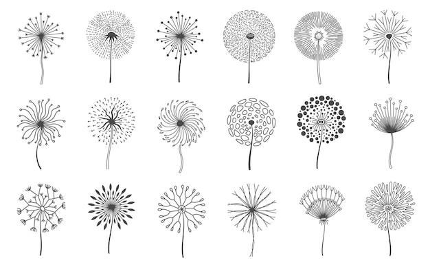 Flores de diente de león. flor de prado esponjoso con semillas. silueta de pelusa floral natural de verano. conjunto de vector de elementos de logotipo decorativo flor de línea. planta frágil floreciente a base de hierbas o botánica