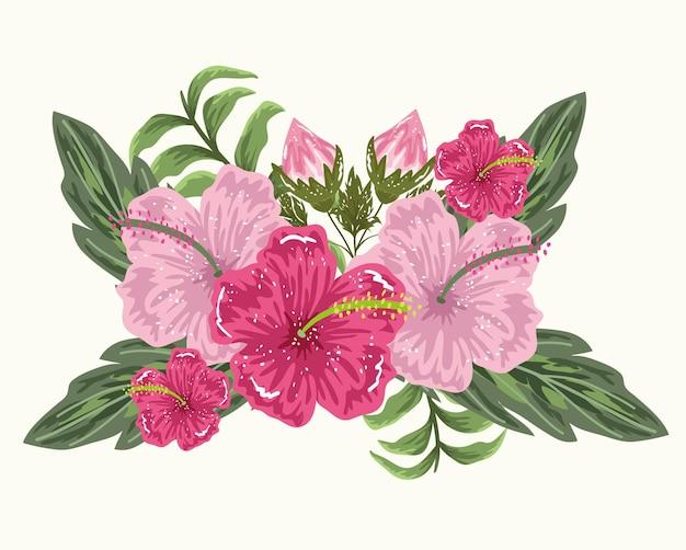 Flores hibisco brote hojas follaje ilustración pintura