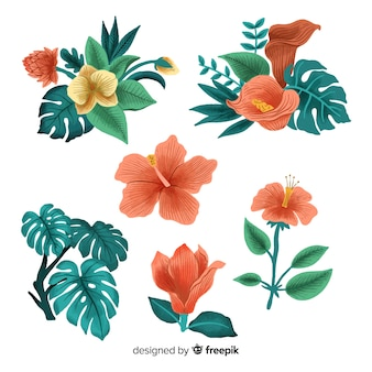 Flores y hojas tropicales dibujadas a mano