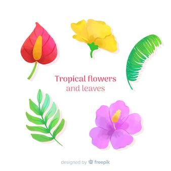 Flores y hojas tropicales