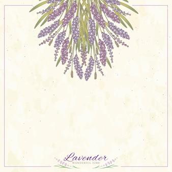 Flores de lavanda grabadas sobre fondo beige con espacio de copia