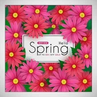 Las flores de margarita florecen en la primavera estacional. y para la promoción de descuento de venta de compras