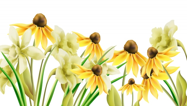 Flores de narciso amarillo brillante en estilo acuarela. bandera